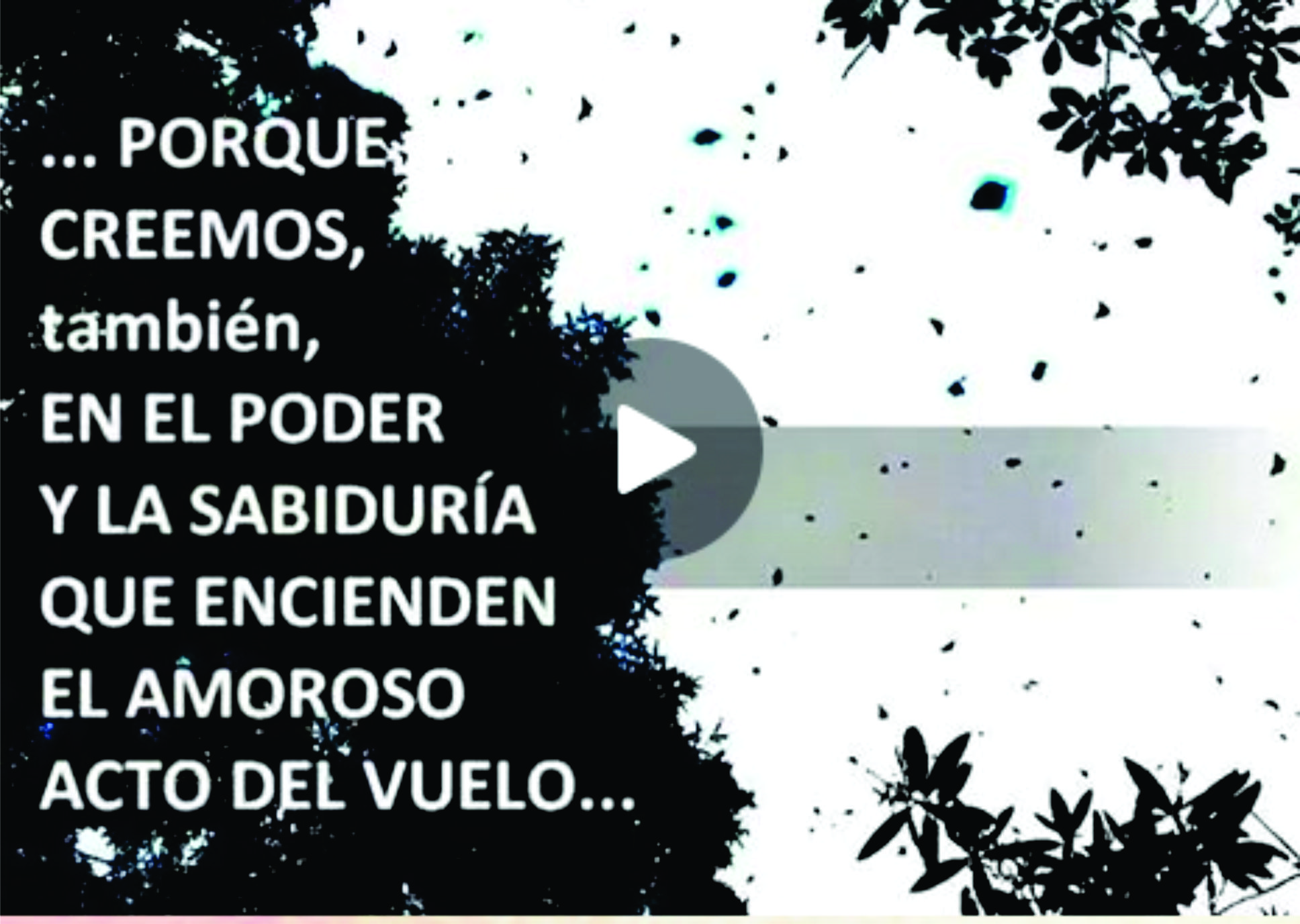 captura_video